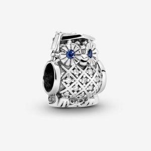 Pandora owl graduation charm